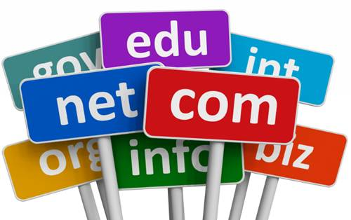 Purchas Domain Name